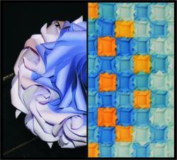 Bridges családi nap 2010 - Szabadtéri origami bemutatók