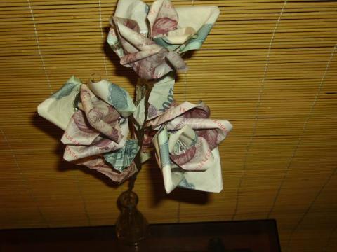 Gulyás Anikó: Rózsa pénzből