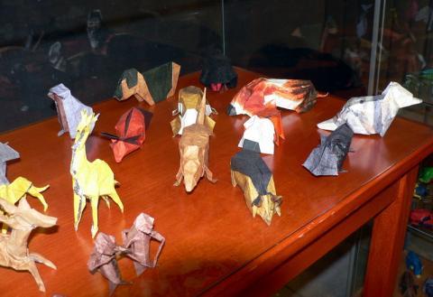 Sebők Zsolt modelljei