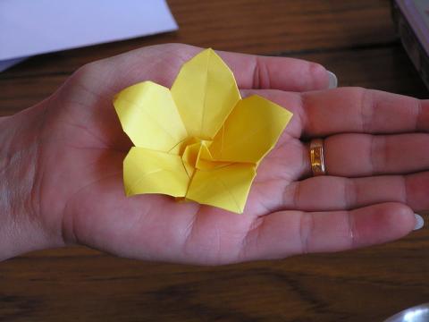 Frim Balázs virága